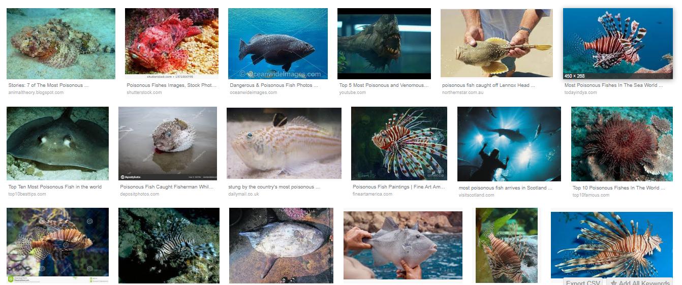 বিষাক্ত মাছ