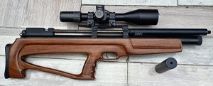 P10 with Crown silencer